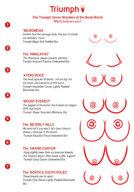 Image result for different breast sizes