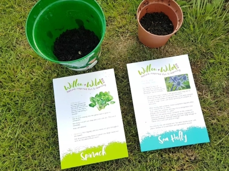 planted - 9. Willow and Wild Craft Box