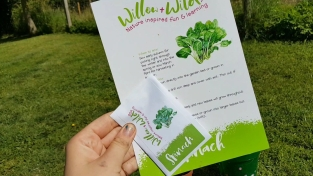 ideas - 9. Willow and Wild Craft Box