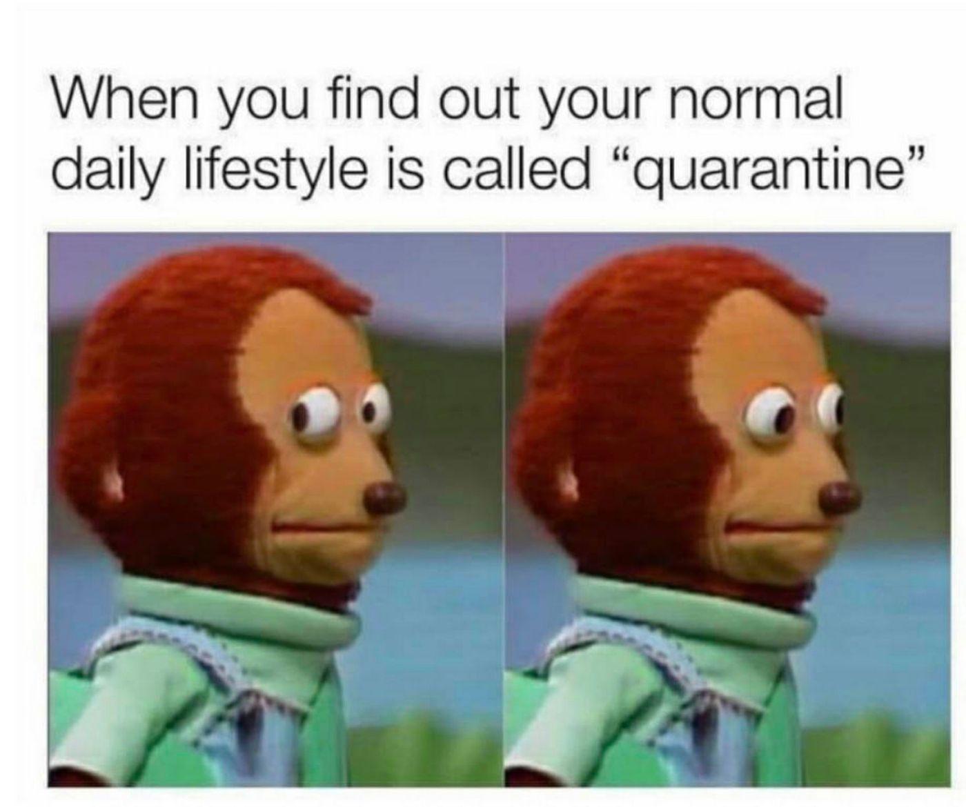 lockdown meme